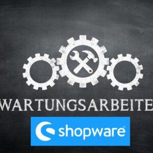 Wartung Shopware - Shopsysteme24 Internet Marketing Agentur
